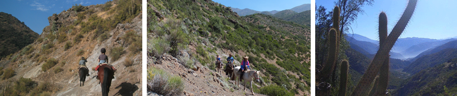 horseback riding holidays day tours