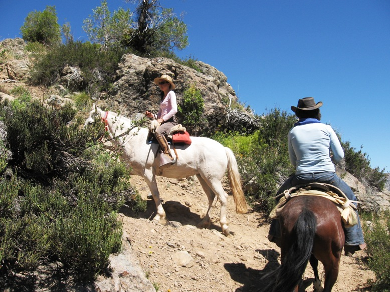 horses riding mountains Chile