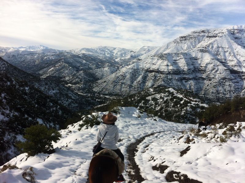 horseback ride in snowy Andes in winter