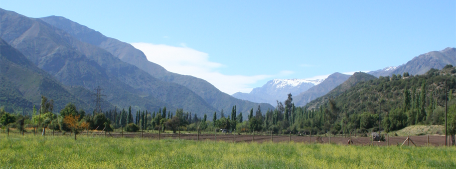FAQ horseback riding trips. horse riding chile santiago things to do